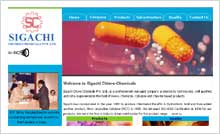 Cellulose & Chlorine Products Website Designing Portfolio Hyderabad - Sigachi Chloro-Chemicals